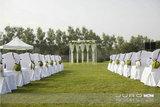 白绿色户外婚礼